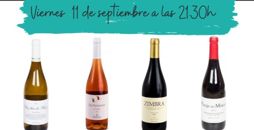 Cata de vinos de Granada