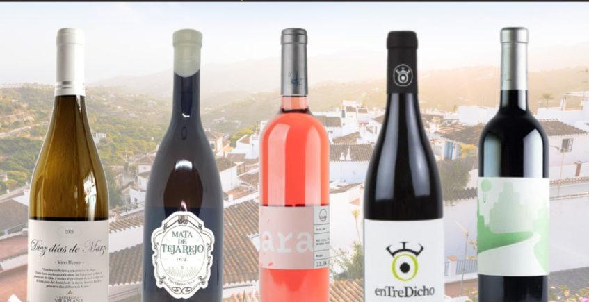 Cata de vinos andaluces en la Vinacería de Gines