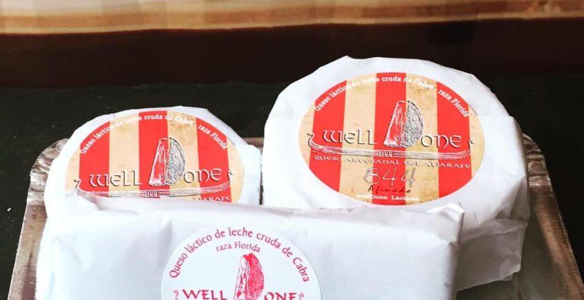 Cata de quesos Welldone