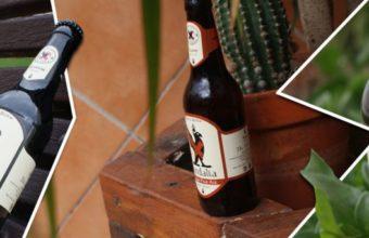 Visita fábrica y cata de Cervezas Vandalia