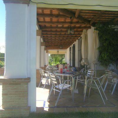 La terraza del restaurante Los Alamos de El Pedroso. Foto: Cosasdecome