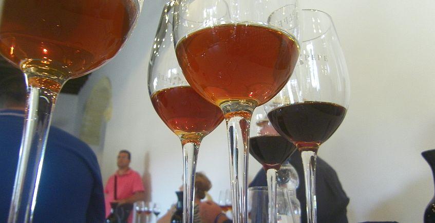 El Ateneo de Mairena del Aljarafe tendrá un Grupo de Amantes de los Vinos y las Bodegas