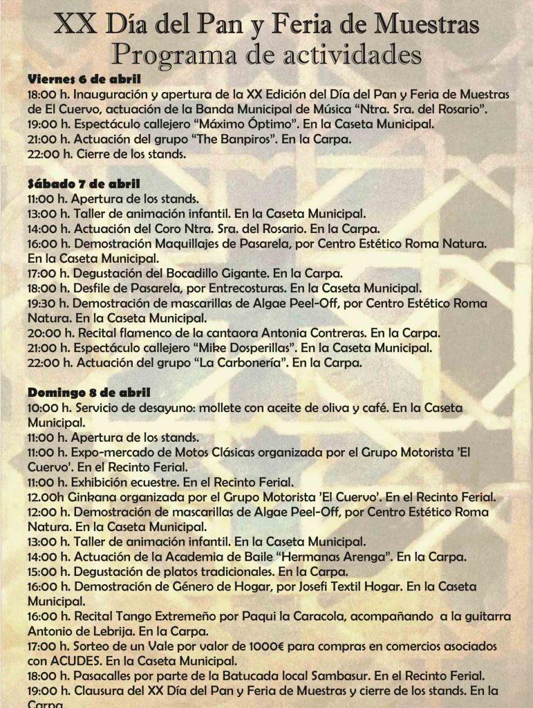 PROGRAMA ACTIVIDADES.cdr