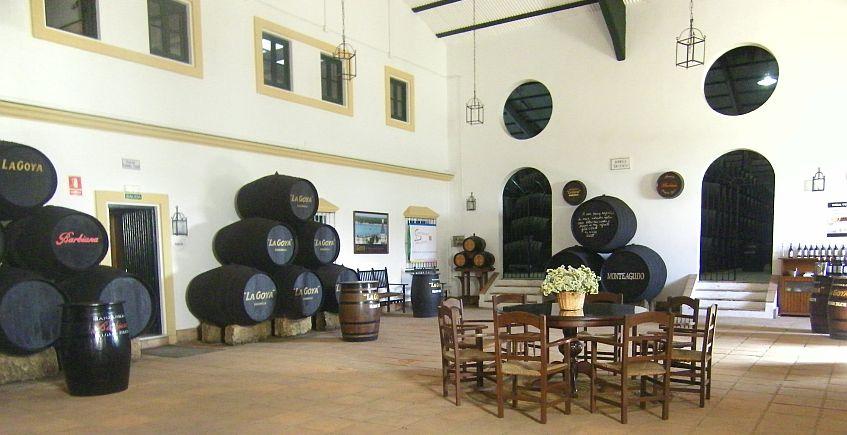 El bus del vino parte de Sevilla para visitar Delgado Zuleta y la Taberna Er Guerrita