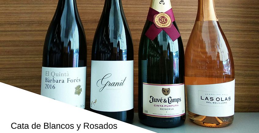 15 de julio. Cata de vinos blancos y rosados en De Re Coqvinaria