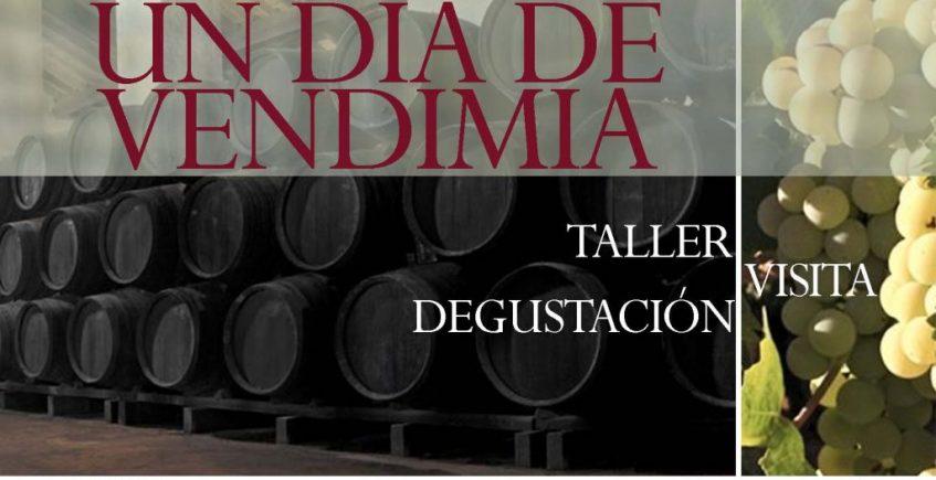 Taller de vendimia, visita a bodega y degustación en Carrión de los Céspedes y Umbrete