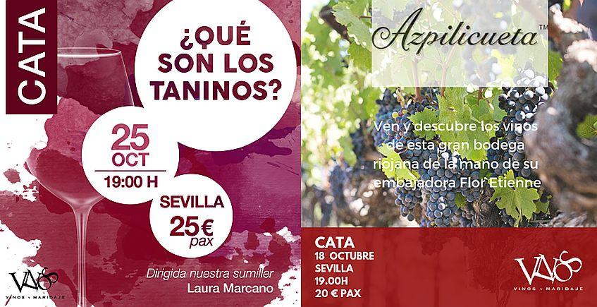 Catas de Azpilicueta y Los Taninos del Vino en Vinos y Maridaje