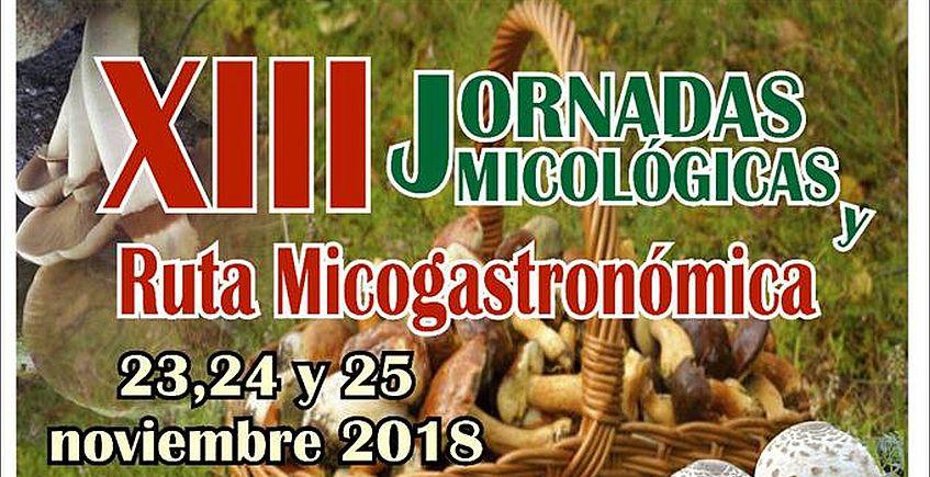 XIII Jornadas micológicas en La Puebla de Los Infantes