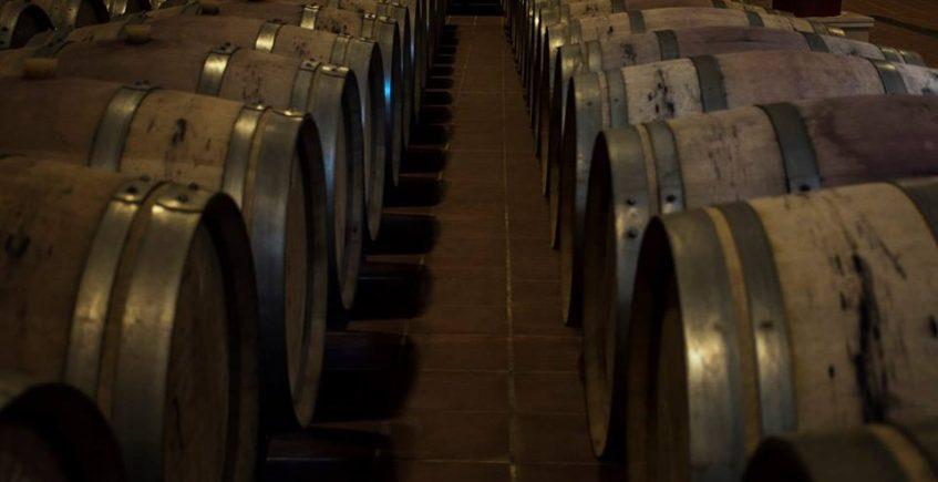 Cata de vinos de Ronda