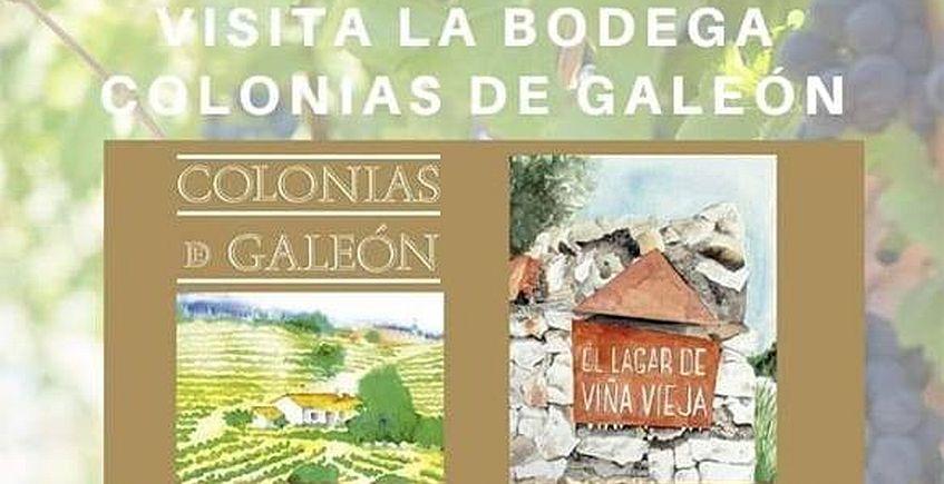 13 de enero. Cazalla de la Sierra. Visita a las bodegas Colonias de Galeón
