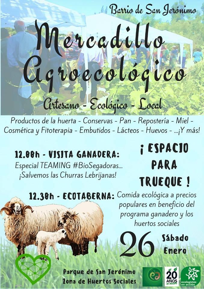 mercadillo agroecologico