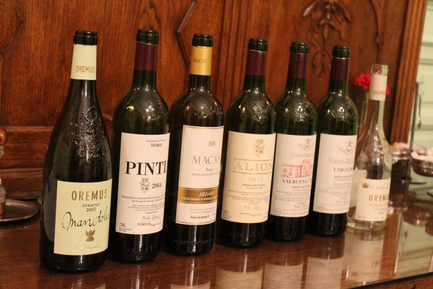 Los vinos catados de la bodega Vega Sicilia. Foto: Cosas de Comé