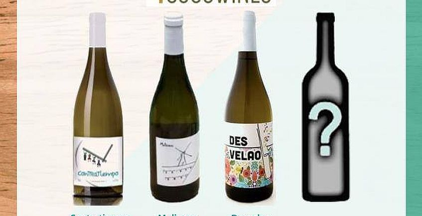 22 de febrero. Sevilla. Presentación de los vinos de 4 Ojos Wines