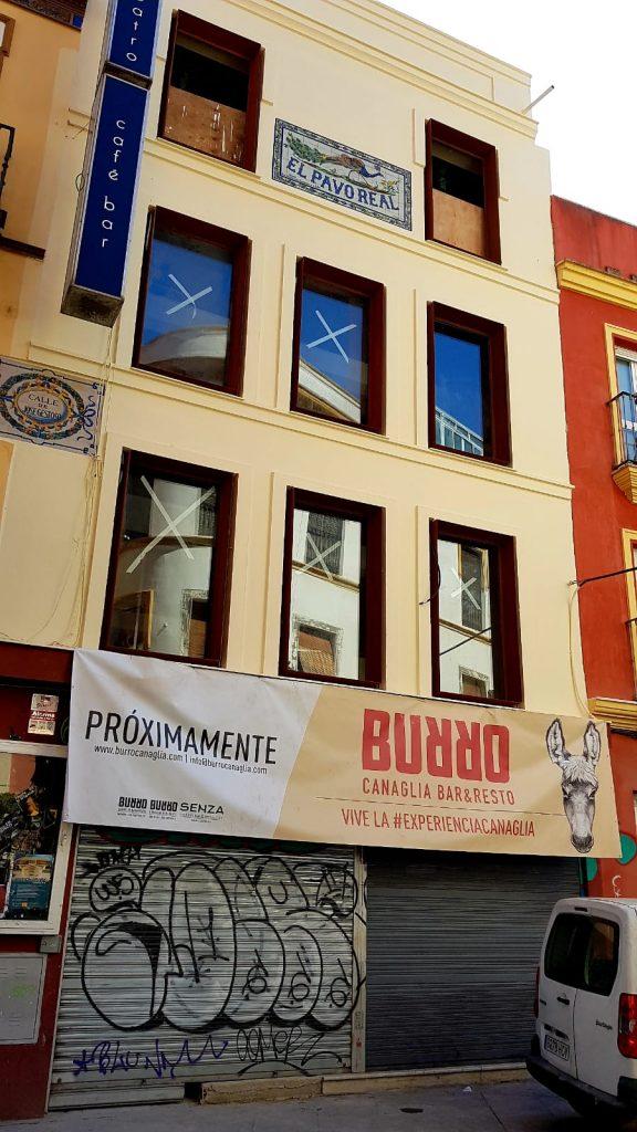 Nuevo local de Burro en la calle José Gestoso. Foto cedida por el establecimiento.