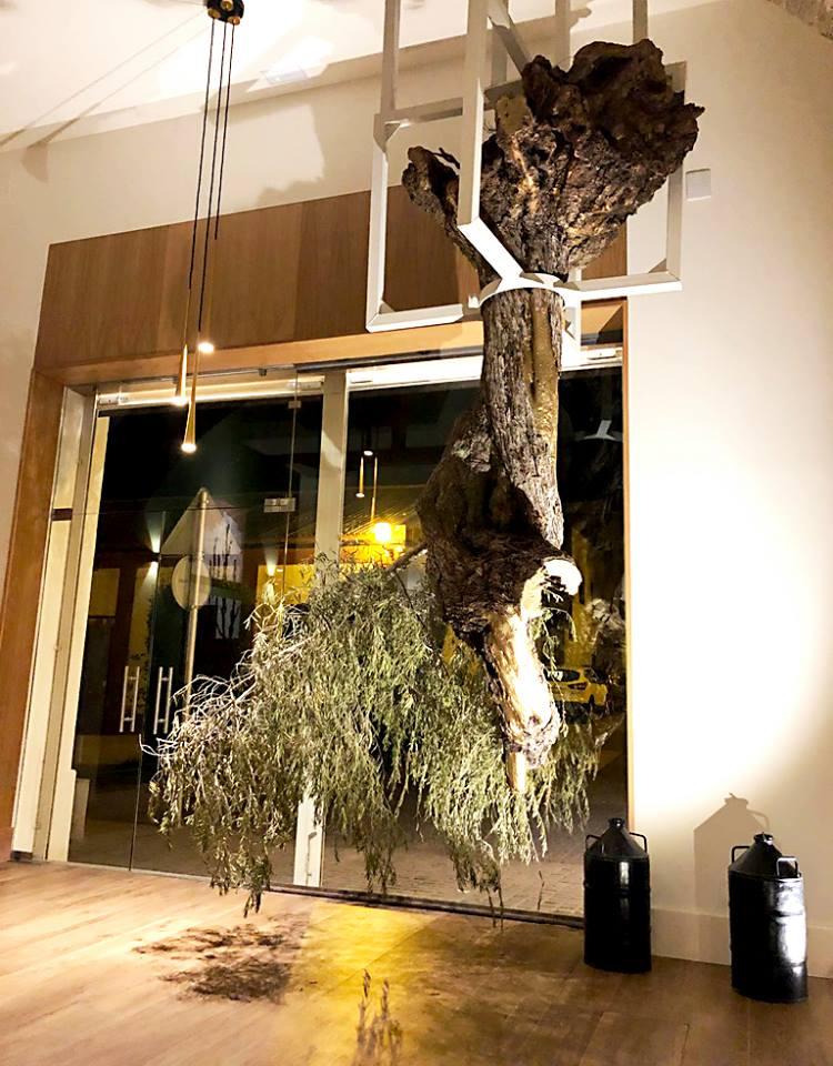 Sugerente olivo del revés que preside la entrada al espacio. Foto cedida por el establecimiento.
