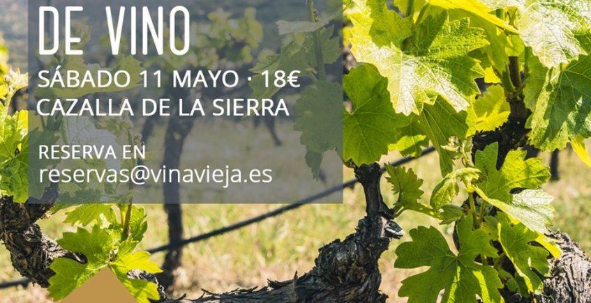 11 de mayo. Cazalla de la Sierra. Cata y visita en el Lagar de Viña Vieja.