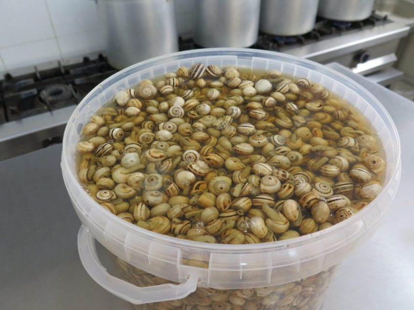 La limpieza y selección de caracoles, principal secreto de la receta de Paqui. Foto: CosasDeComé.