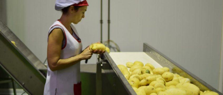 La elaboración de las patatas obedece a un proceso artesanal y minucioso. Foto cedida por el establecimiento.