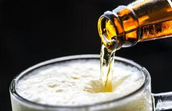 II cata de cerveza artesana