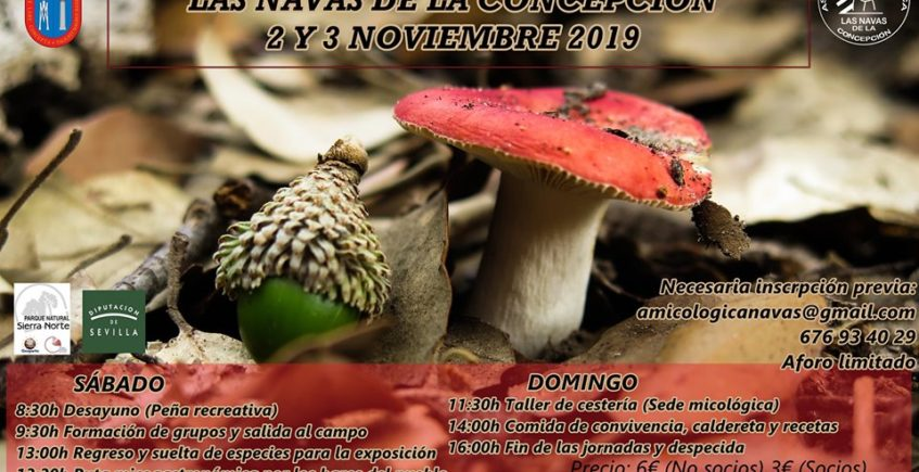 IV Jornadas Micogastronómicas. 2 y 3 de noviembre. Las Navas de la Concepción.