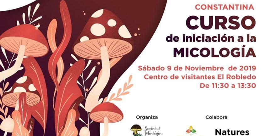 Curso de iniciación a la micología. 9 de noviembre. Constantina.