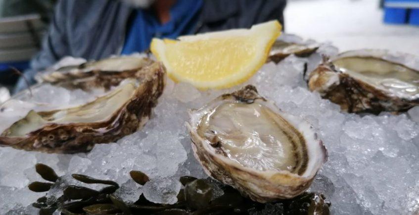 Una semana de ostras con champán en Becerrita