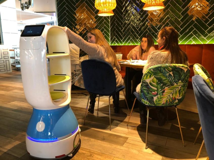 El robot demanda caricias para regresar a su punto de origen. Foto: CosasDeComé.