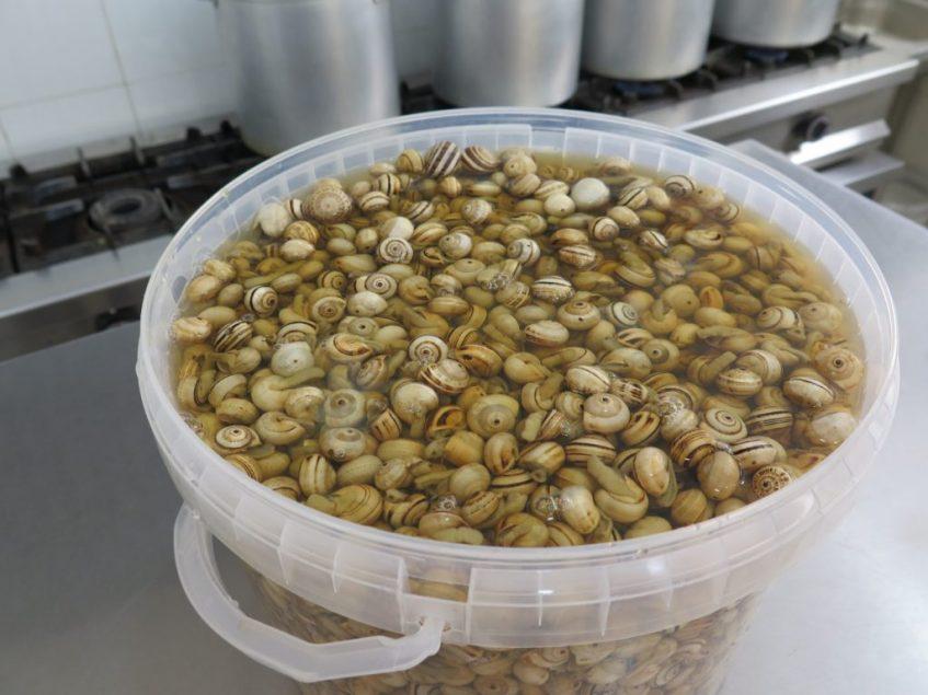 El despacho de caracoles de Sevilla Este aguarda la llegada de los primeros caracoles para preparar sus habituales tarrinas. Foto: CosasDeComé