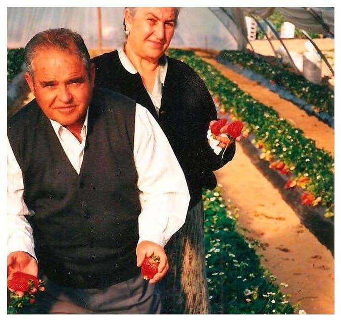 Manuel Barrera Bascón, padre de Manolo, Fidel y Joaquín, fue el creador de este negocio familiar que también incluye el cultivo de fresas. Foto cedida por El Descansillo.