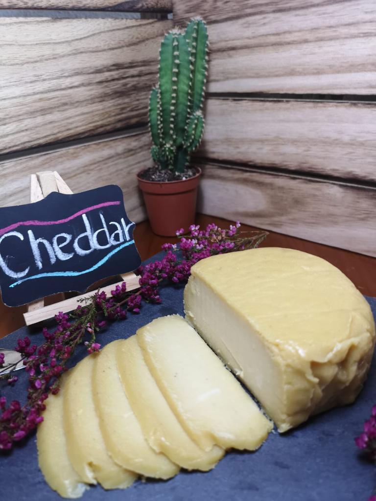 Hasta siete variedades de quesos elaboran las hermanas Vizcaíno. Foto cedida por la empresa