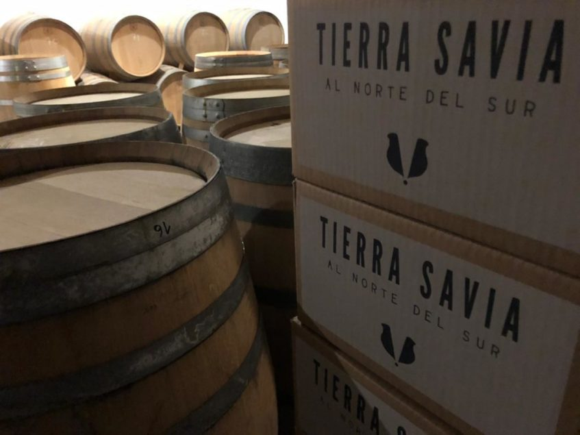 Algunos de sus vinos fermentan en barrica de roble francés o americana. Foto: CosasDeComé