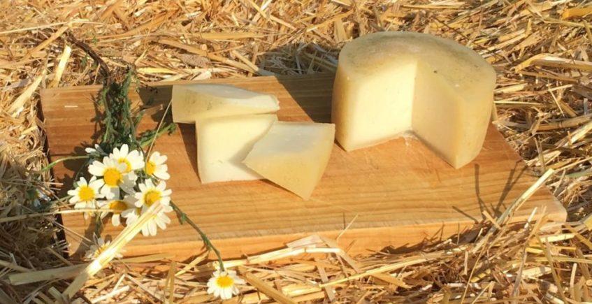 Anda La Oveja, quesos ecológicos en El Real de La Jara
