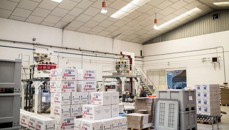 Instalaciones-Fábricante-Patatas-Fritas-768x512 (1)