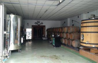Cata online de vinos de Málaga