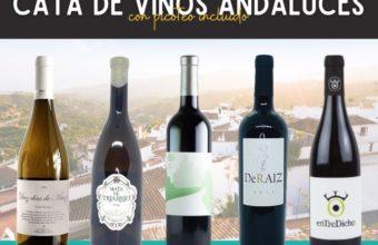 Cata de vinos andaluces en la Vinacería