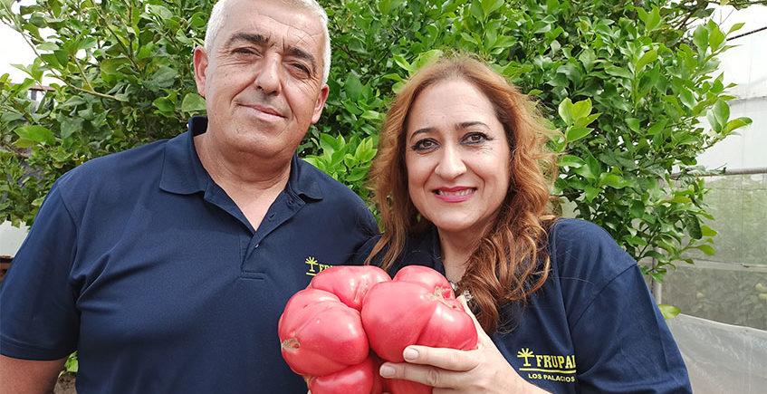 El huerto de los tomates raritos