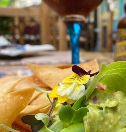 Michelada-y-guacamole-con-totopos-de-El-Chile-Habanero-de-Jerez-768x435