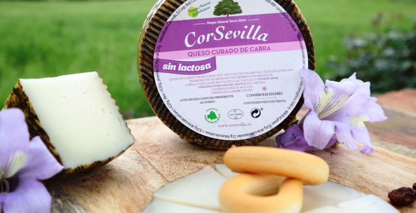 Queso curado sin lactosa CorSevilla 10