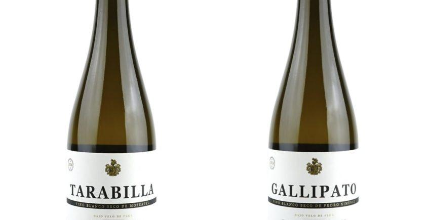 Tarabilla-y-Gallipato
