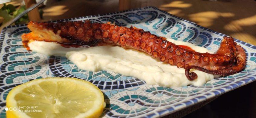 Pescados frescos, carnes ibéricas y guisos caseros centran la oferta gastronómica de la taberna. Foto cedida por el establecimiento