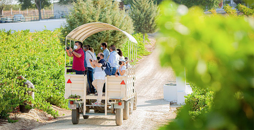 Vinos, carriolas y caballos, la original oferta enoturística de las bodegas Salado de Umbrete