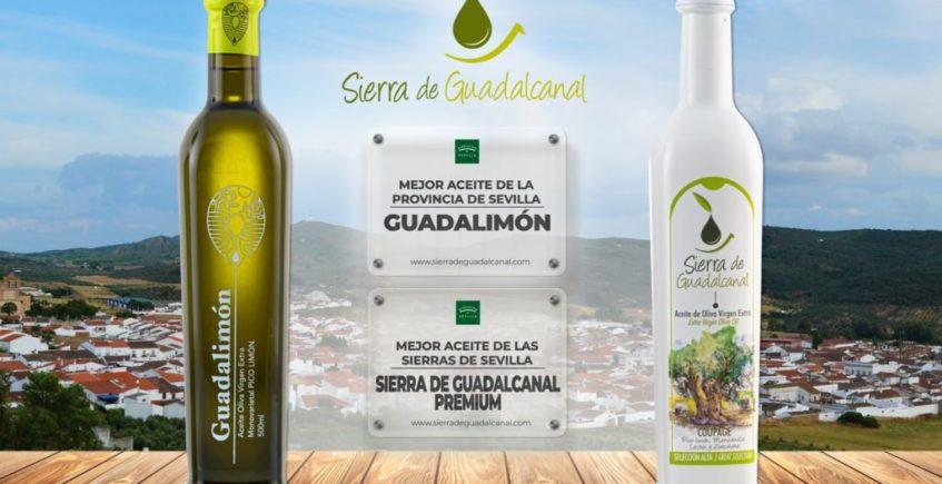 La cooperativa San Sebastián de Guadalcanal se lleva dos de los Premios a los Mejores Aceites de Oliva Virgen Extra de la Provincia